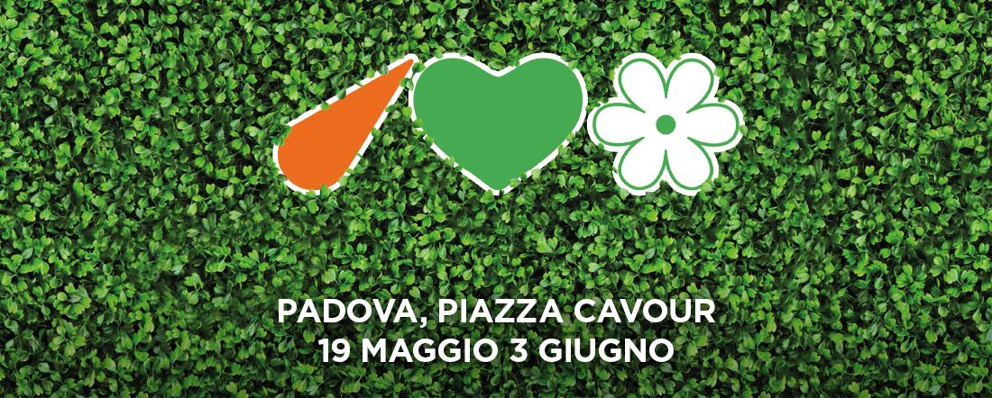 Parco Temporaneo Piazza Cavour