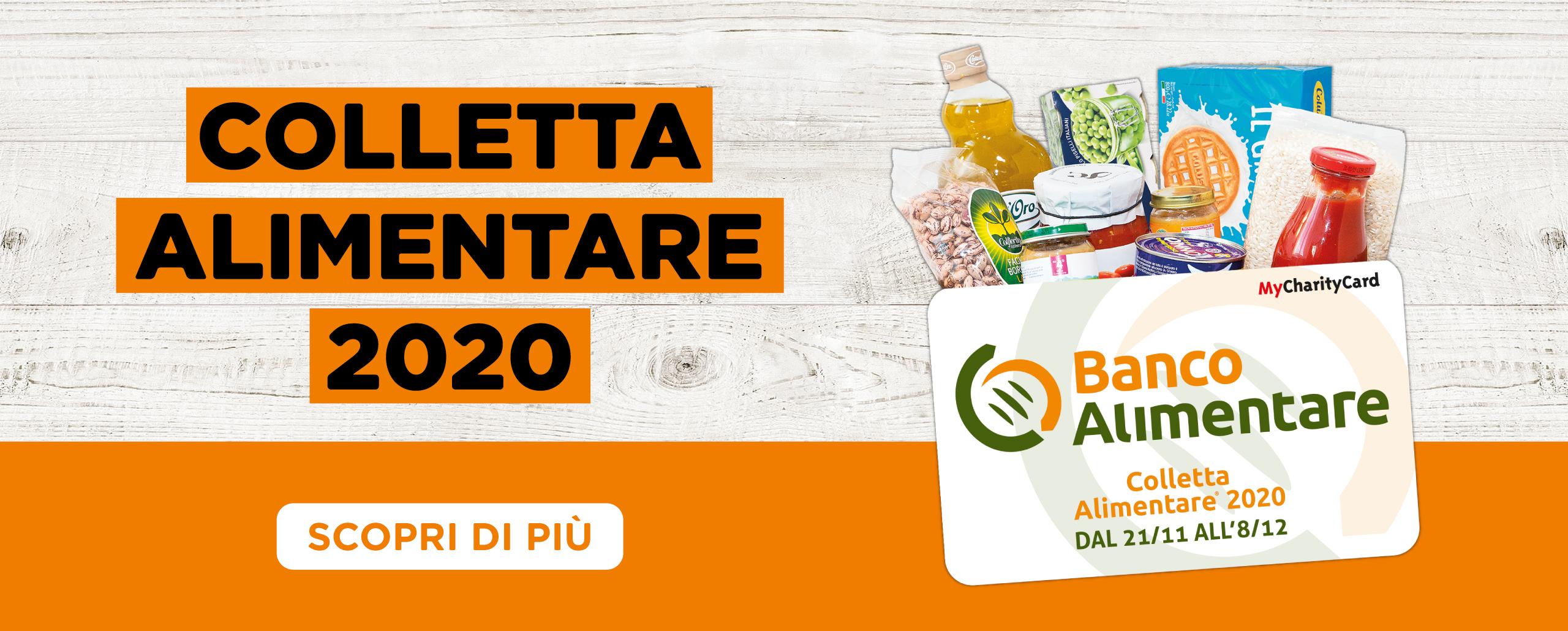 Banner Colletta Alimentare (sito)