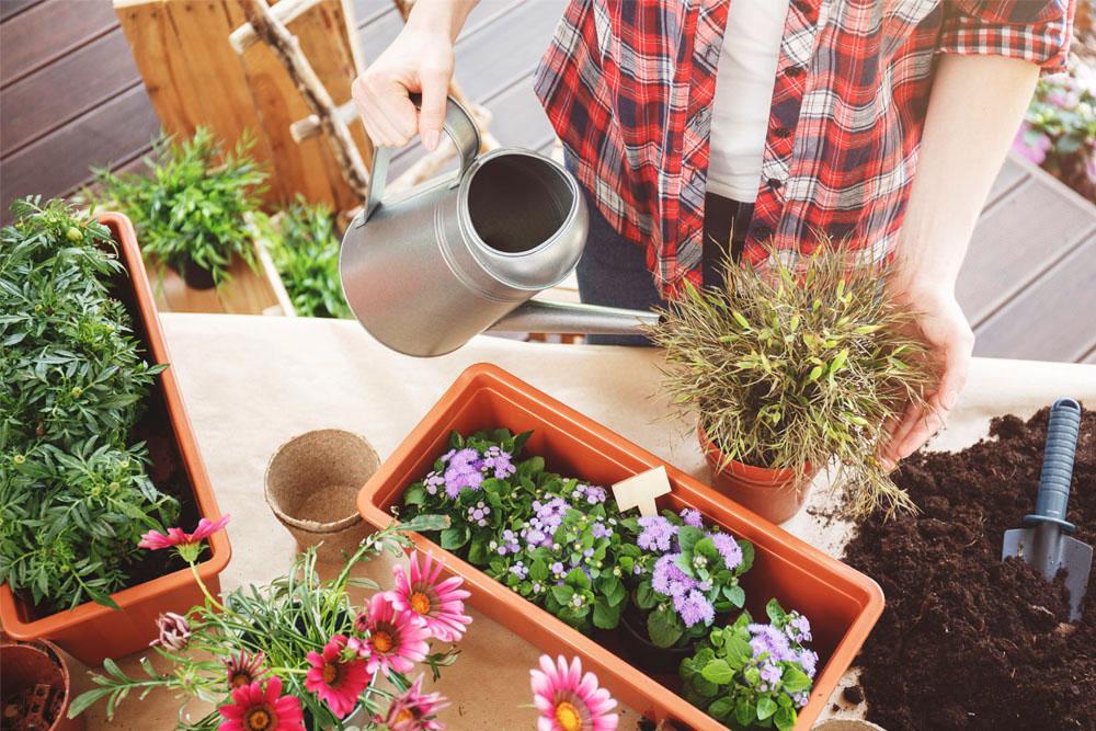Come preparare il giardino e il terrazzo alla primavera