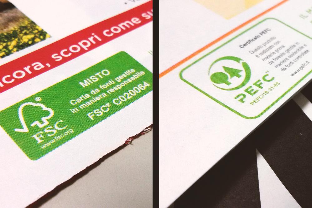 Imparare a riconoscere se la carta che usiamo è eco-sostenibile: i certificati FSC e PEFC.