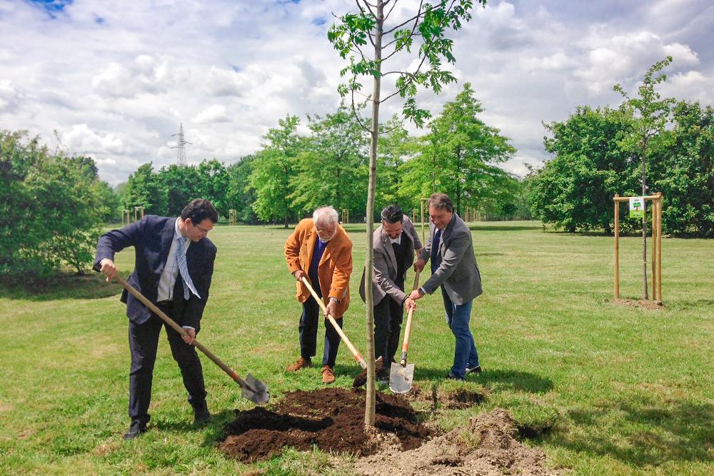 180 nuovi alberi al Parco San Giuliano di Mestre