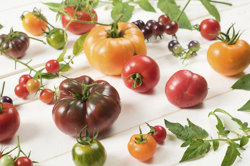 Pomodori: le varietà più insolite