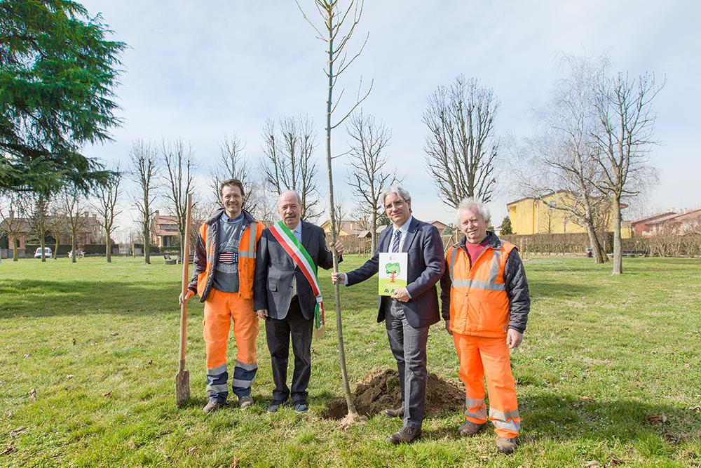 30 nuovi alberi per il Comune di Saonara