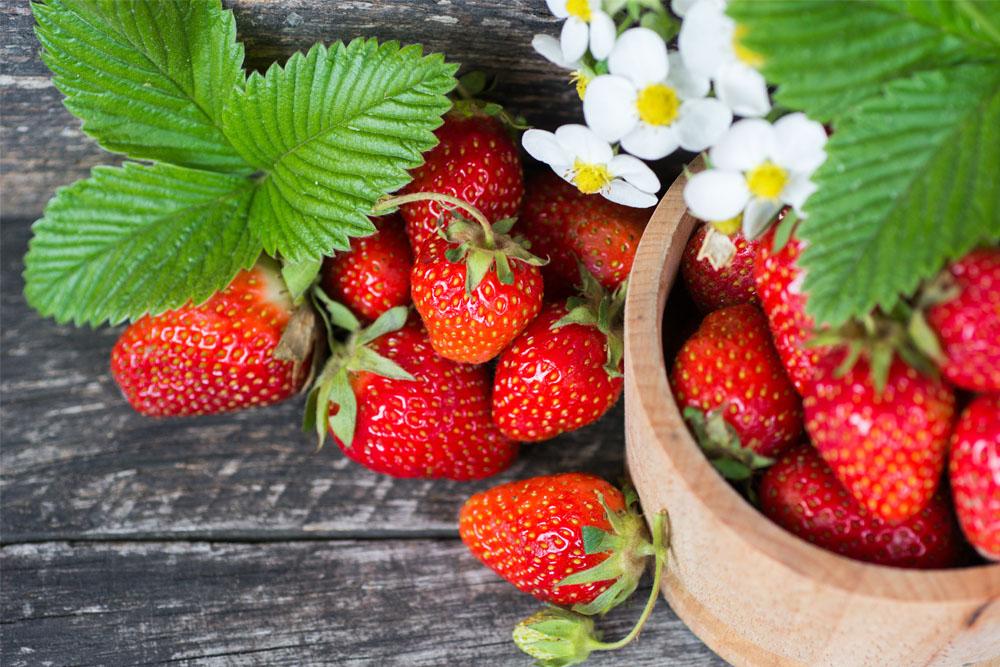 I benefici delle fragole, superfood di primavera