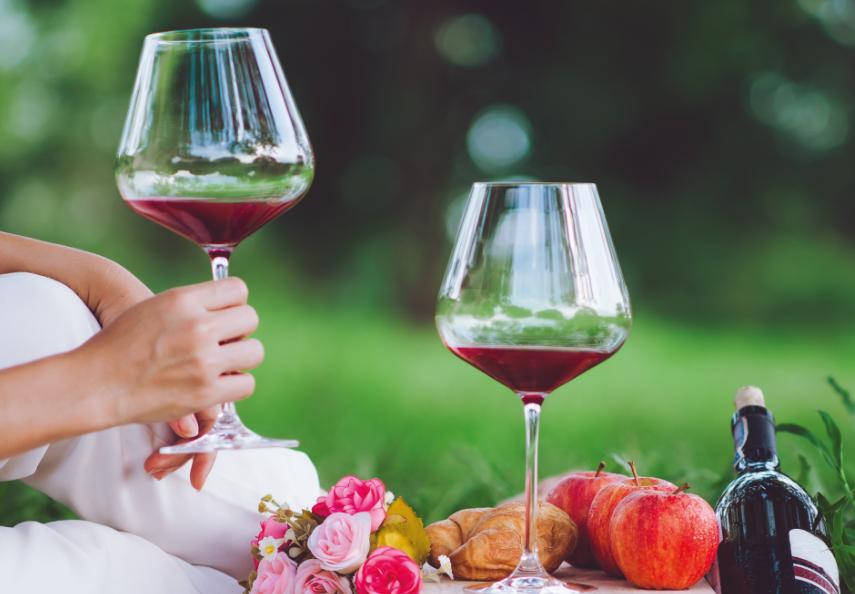 Alla scoperta dei Colli Euganei e del buon vino