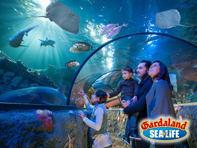 INGRESSO SEA LIFE AQUARIUM GARDALAND