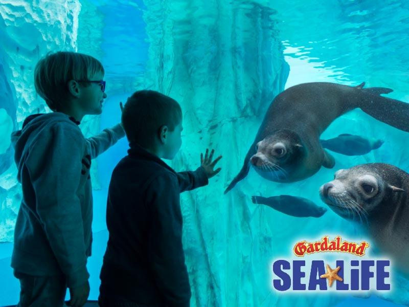 INGRESSO GARDALAND SEA LIFE AQUARIUM 2020